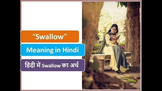 monetized meaning in hindi
