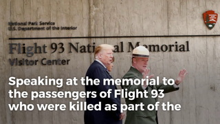 Flight 11 Attendants Became Unsung 9/11 Heroes with Their