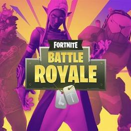 Free Fortnite Skins 2019 No Human Verification Fortnite Battle